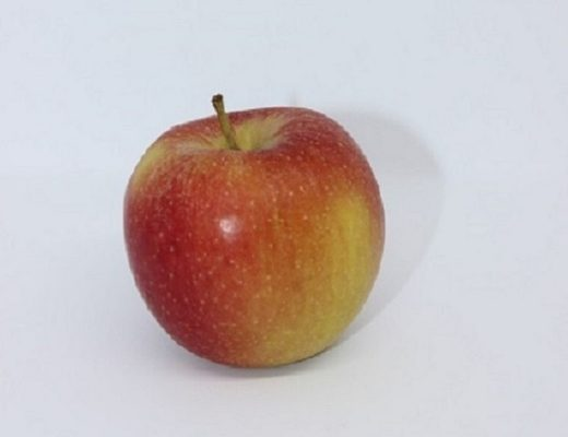 Shake-Apfel-Ernährung