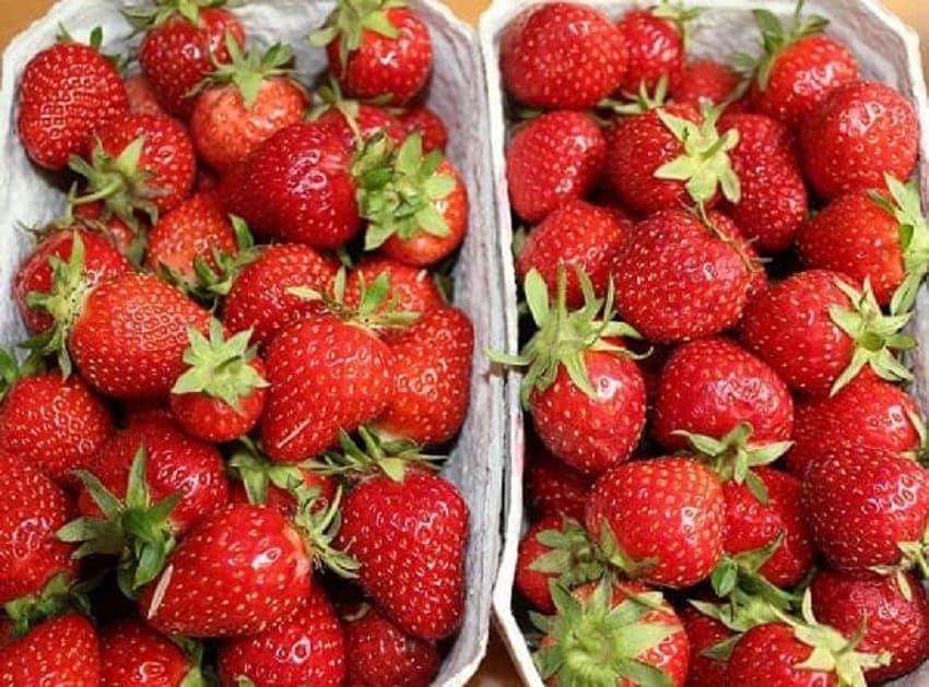 Erdbeeren-Müsli