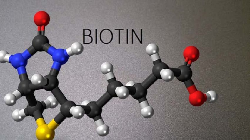 Biotin-frauenpowertrotzms